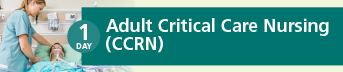 Adult Critical Care Nursing Certification (CCRN) Review Course